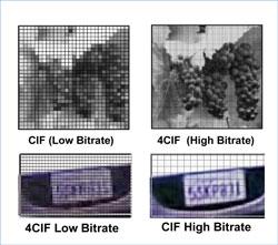 CIF vs. 4CIF